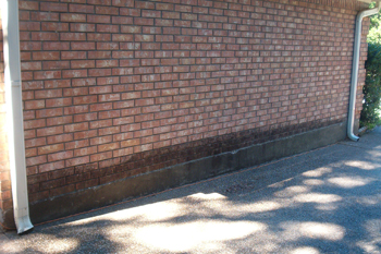 Brick Wall be Damaged by Moisture and Growing Mildew